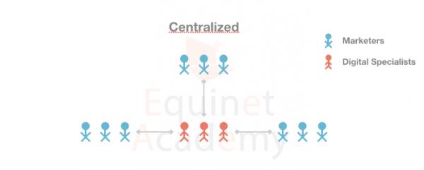 Centralized-Digital-Marketing-Team-Structure