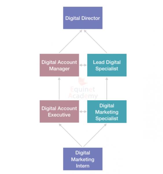 Digital Marketing Career Progress in Digital Agency