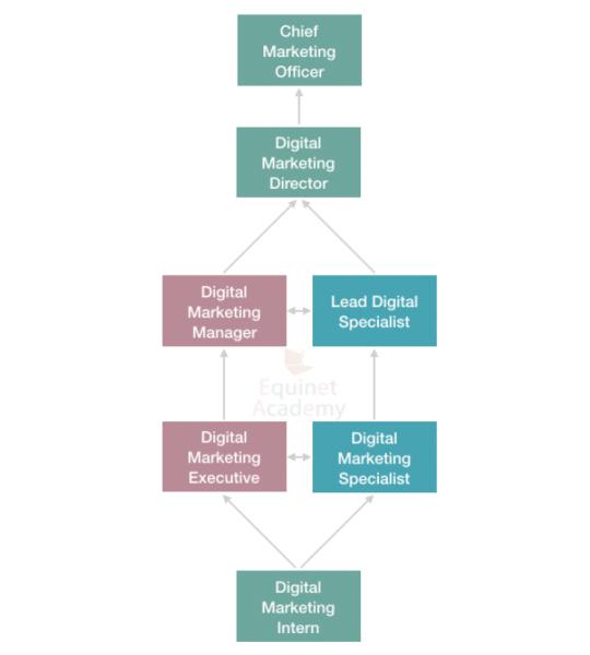 Digital Marketing Career Progression in Client Side