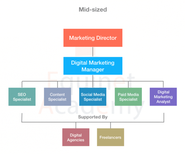 Mid-sized-Digital-Marketing-Team-Structure
