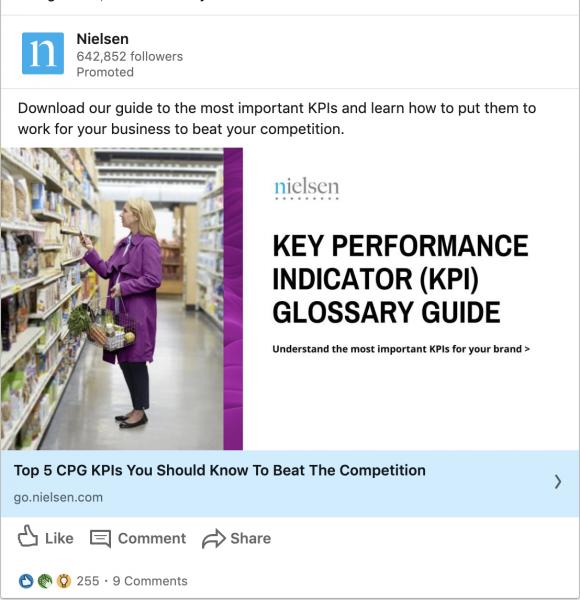 Nielsen ads on KPI Glossary Guide