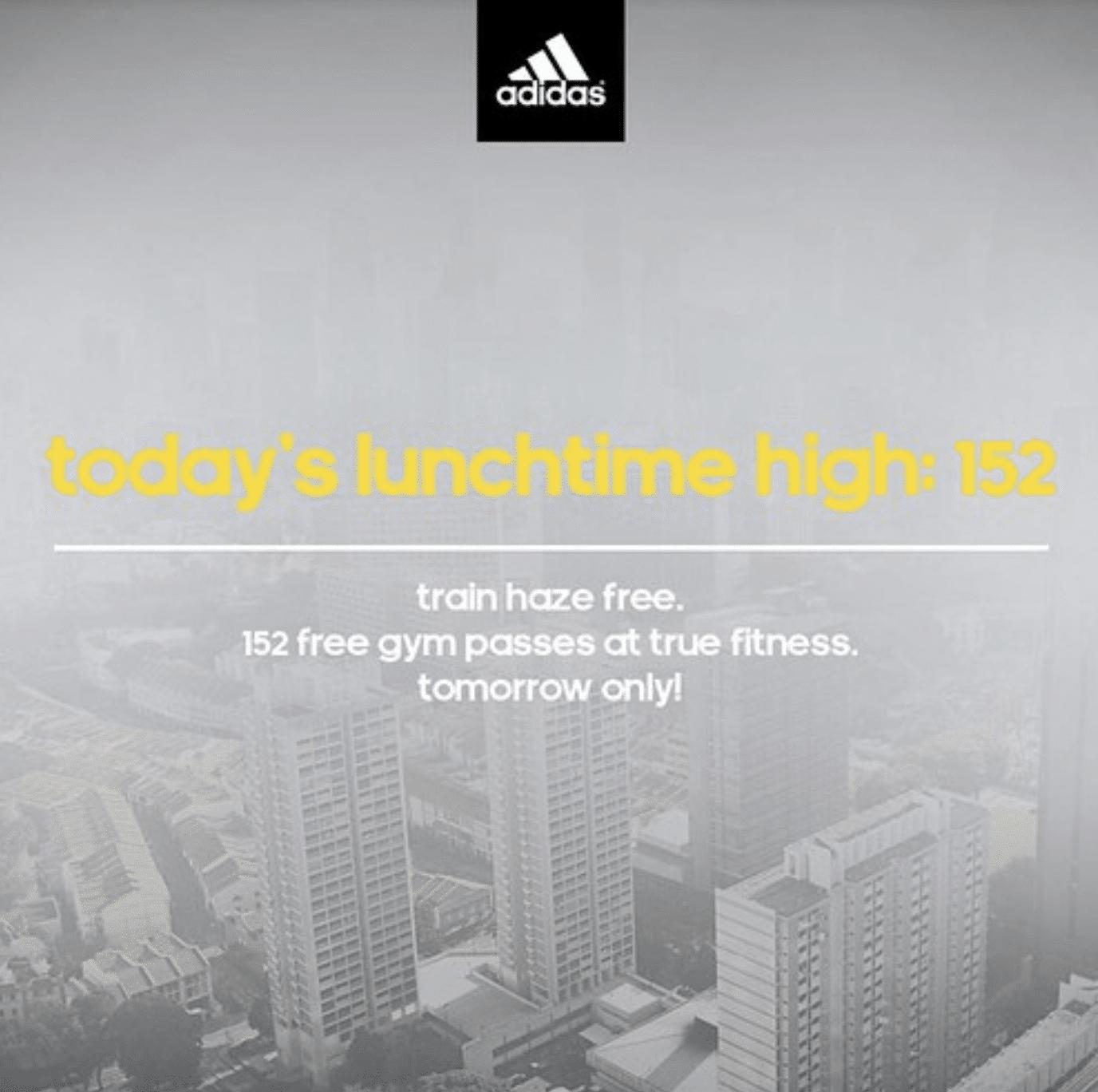 Nike train haze free gym pass at true fitness