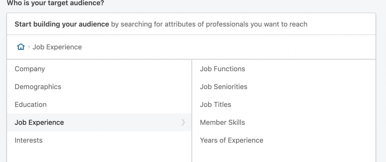 LinkedIn-Professional-Attribute-Targeting