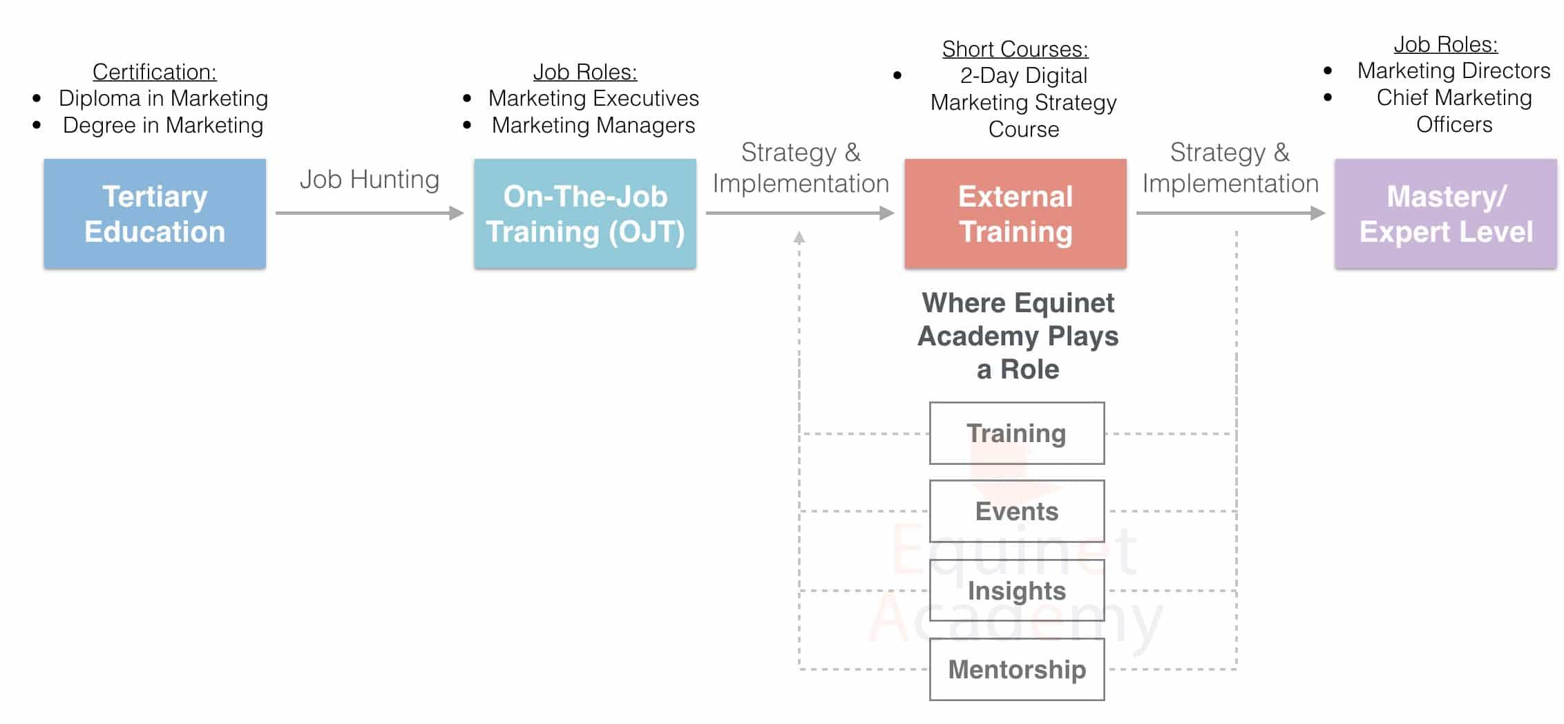 Digital Marketing Career Progression Pathway